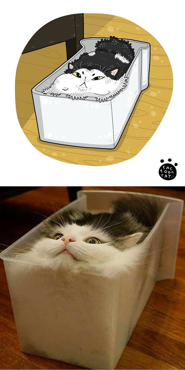 38 fotos de gatos mais engraçadas e famosas da Internet são ilustradas pela Tactooncat 26