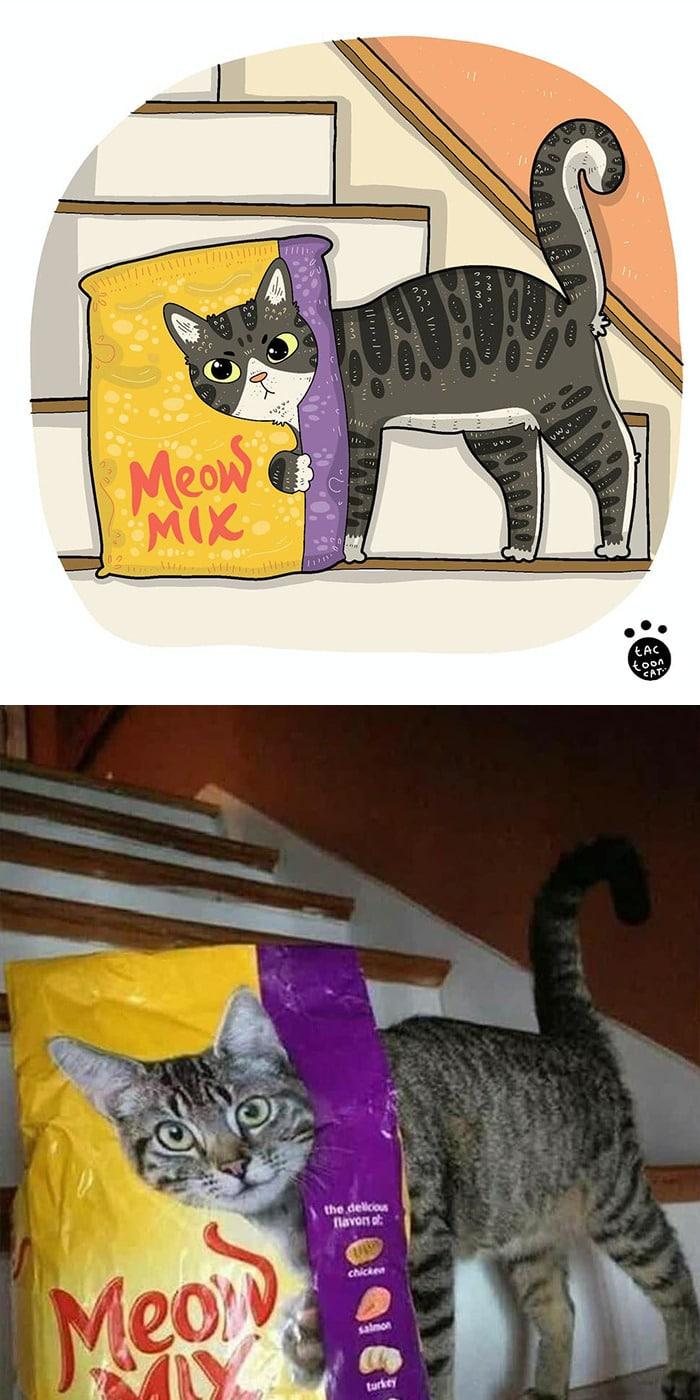 38 fotos de gatos mais engraçadas e famosas da Internet são ilustradas pela Tactooncat 34