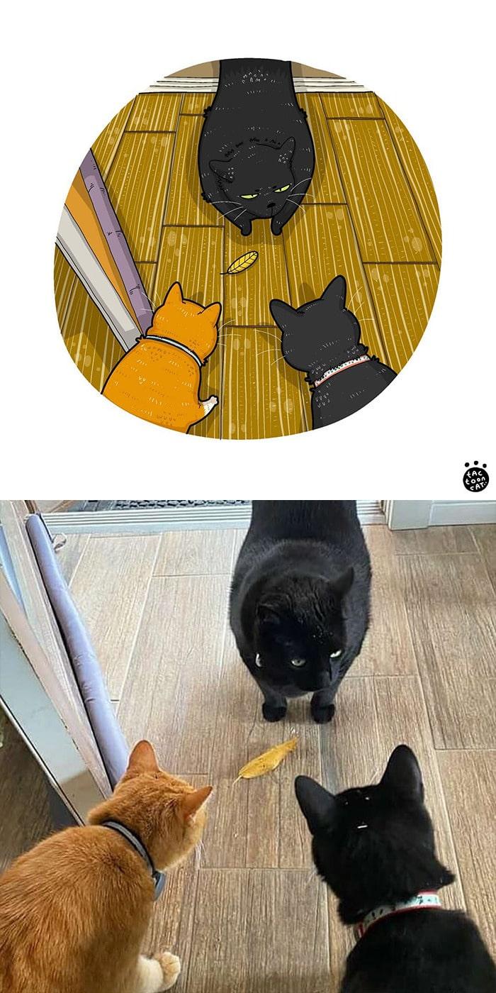 38 fotos de gatos mais engraçadas e famosas da Internet são ilustradas pela Tactooncat 37
