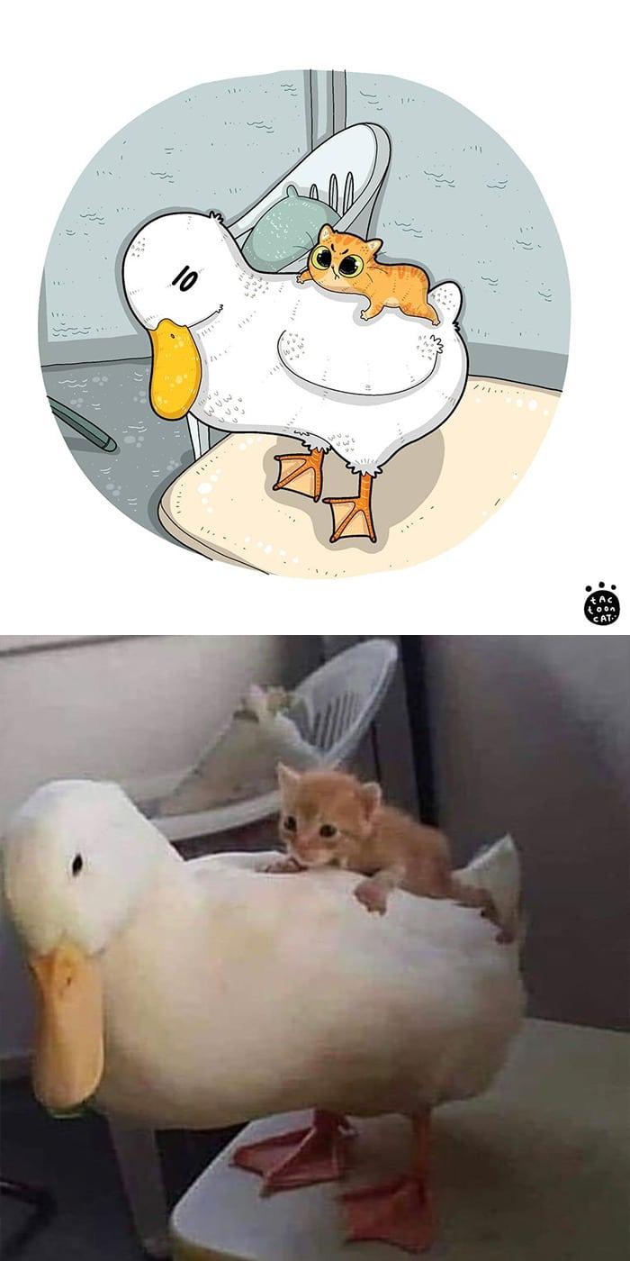 38 fotos de gatos mais engraçadas e famosas da Internet são ilustradas pela Tactooncat 39