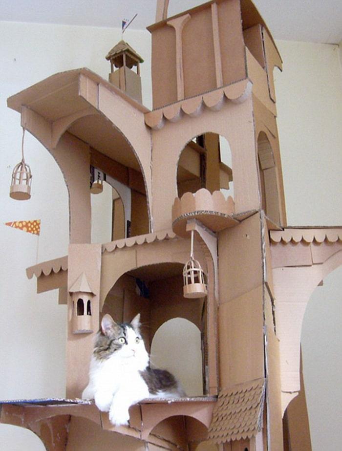 Com tédio na quarentena donos de gatos começaram a construir castelos de papelão 4