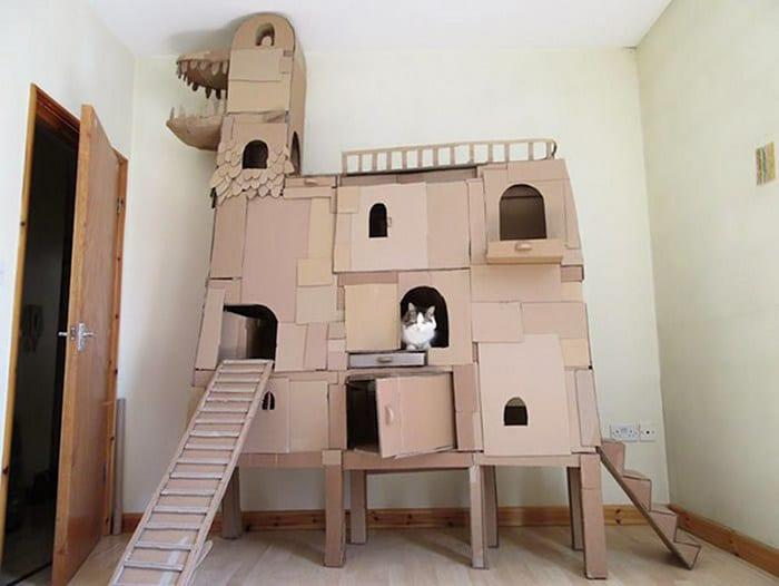 Com tédio na quarentena donos de gatos começaram a construir castelos de papelão 6