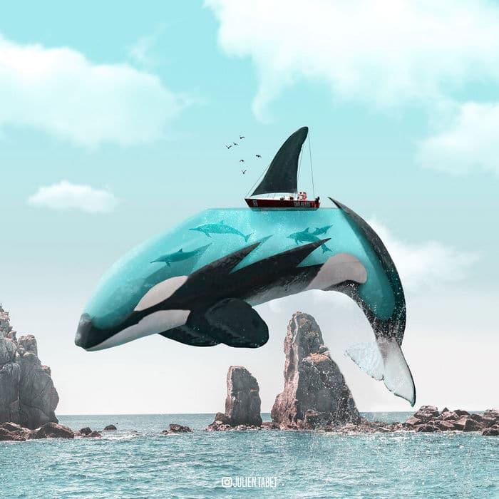 Aqui está o que eu imagino que os animais fazem quando não estamos olhando 3