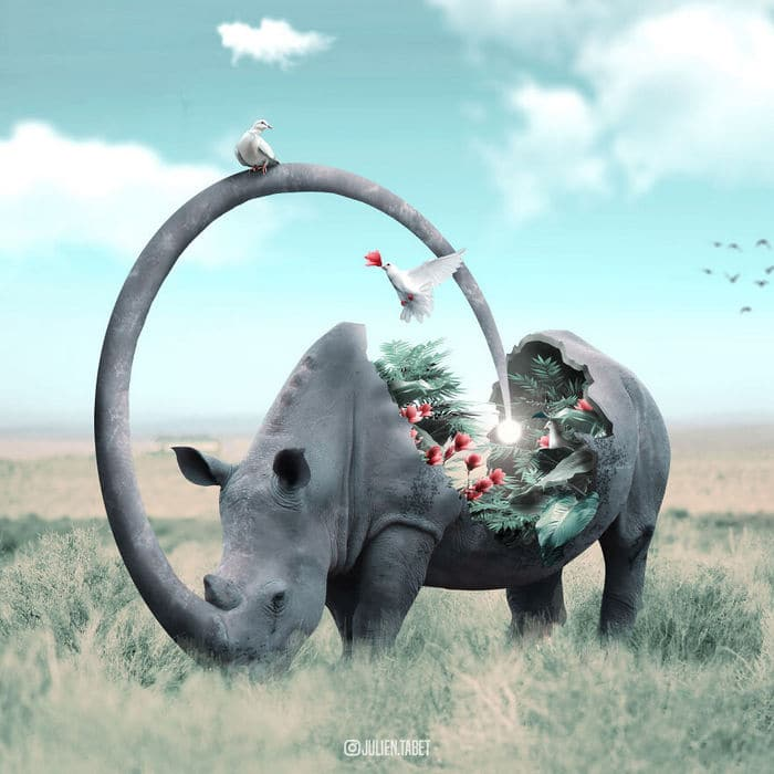 Aqui está o que eu imagino que os animais fazem quando não estamos olhando 4