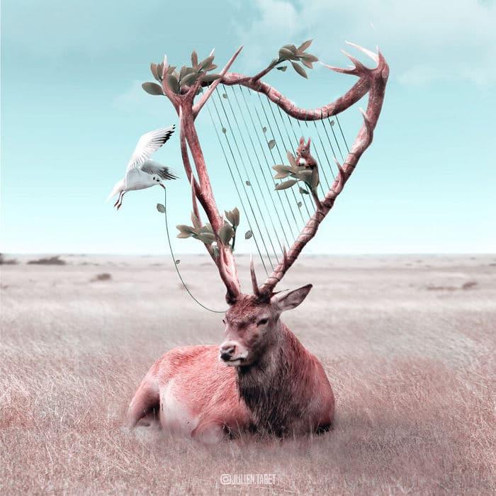 Aqui está o que eu imagino que os animais fazem quando não estamos olhando 5