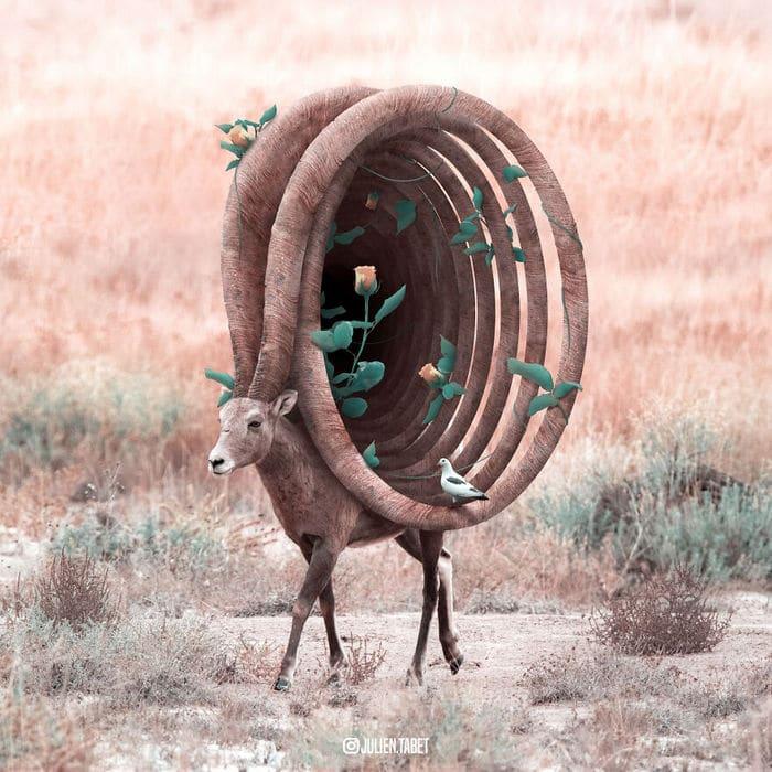 Aqui está o que eu imagino que os animais fazem quando não estamos olhando 6