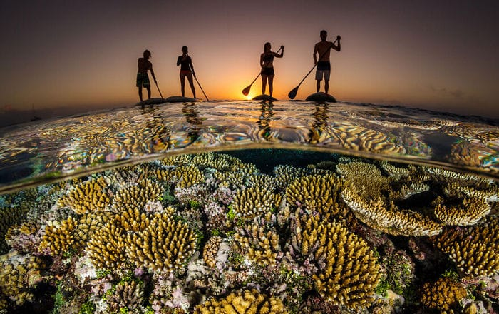 34 fotos incríveis do Ocean Photography Awards 2020 23