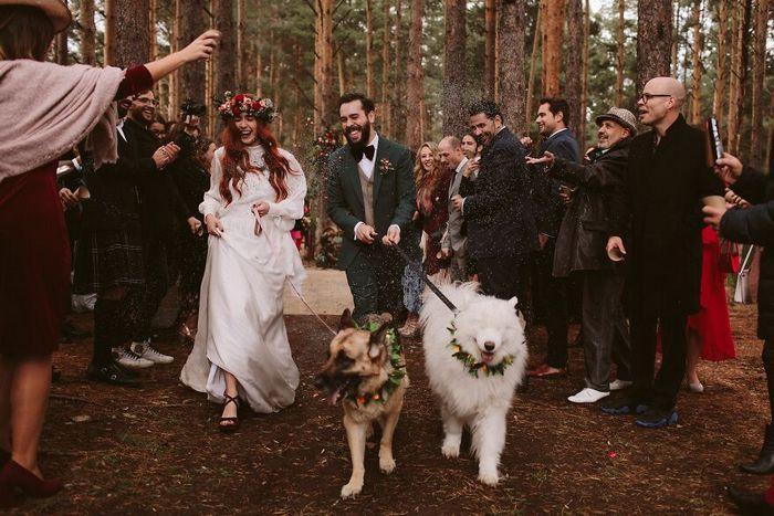 As 30 melhores fotos de casamentos de 2020 9
