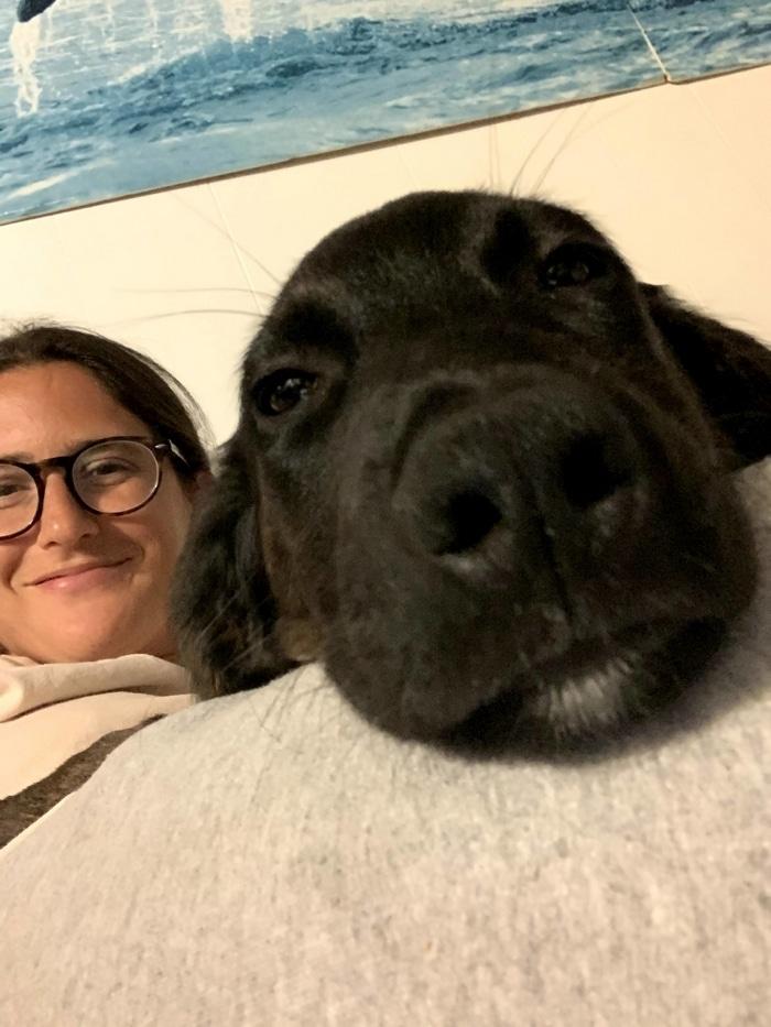 80 coisas que pensei durante o primeiro mês com minha cachorra 3