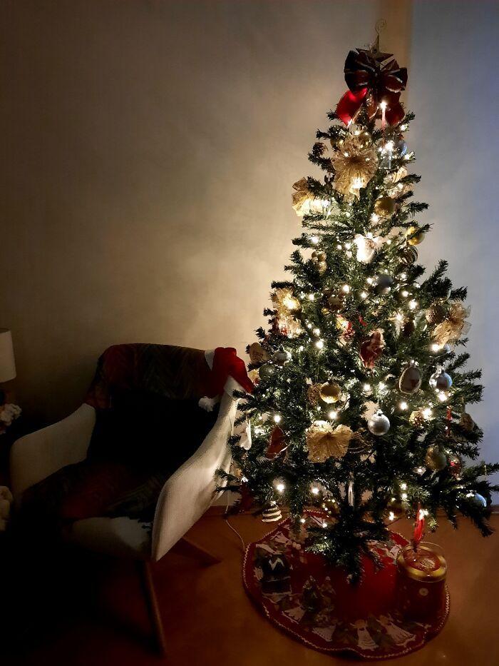 Ei, leitores, compartilhem sua árvore de Natal conosco 9