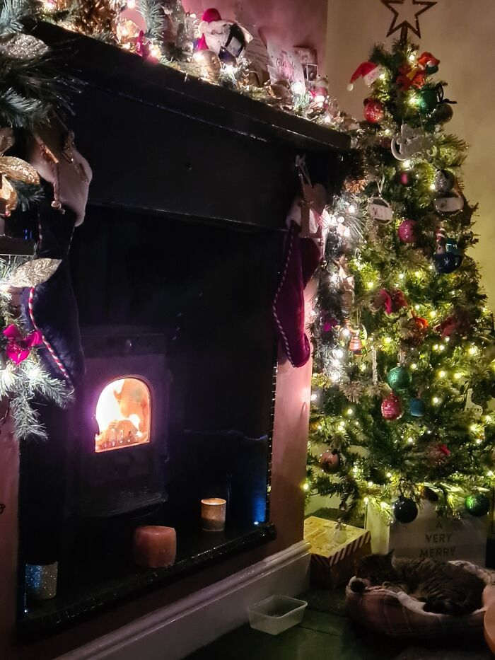 Ei, leitores, compartilhem sua árvore de Natal conosco 12