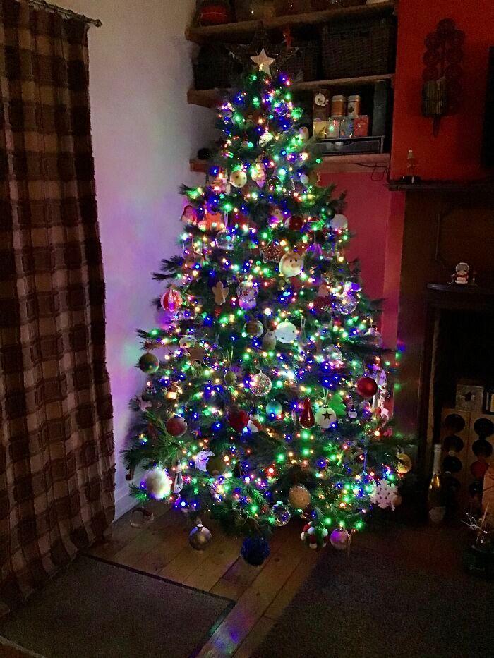 Ei, leitores, compartilhem sua árvore de Natal conosco 21