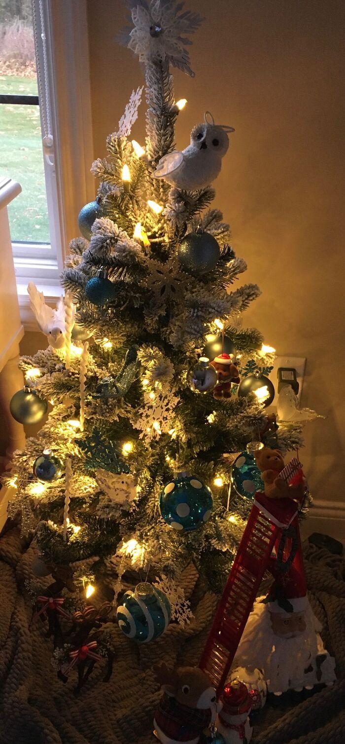 Ei, leitores, compartilhem sua árvore de Natal conosco 23