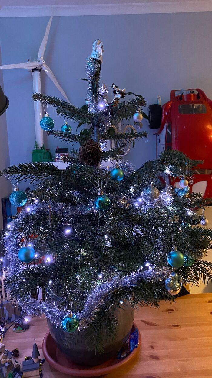 Ei, leitores, compartilhem sua árvore de Natal conosco 26