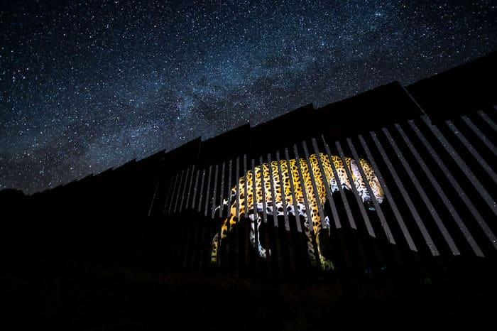 35 fotos incríveis e vencedoras do fotógrafo de natureza do ano de 2020 3