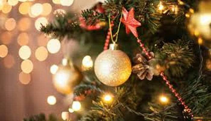 Frases de Natal para celebrar com muito amor 7