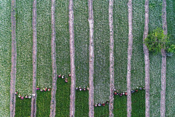 40 fotos da natureza de tirar o fôlego que ganharam o 2020 International Photography Awards 8