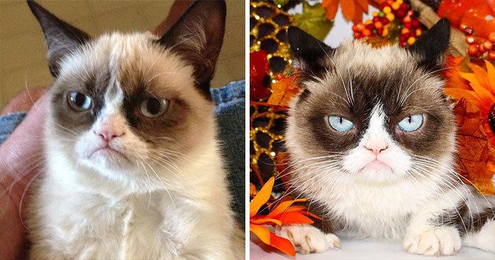 22 fotos de antes e agora que mostram como os memes famosos mudaram 18
