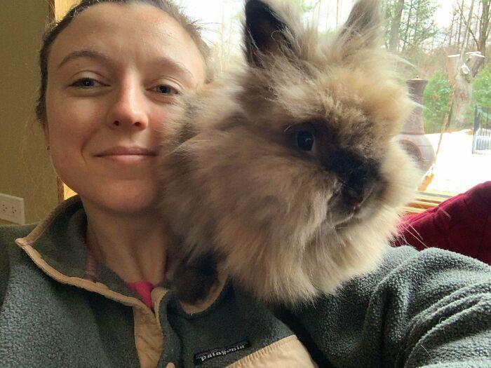 As pessoas postam fotos de gatos nos ombros e agora os proprietários de outros animais de estimação aderiram à tendência 17