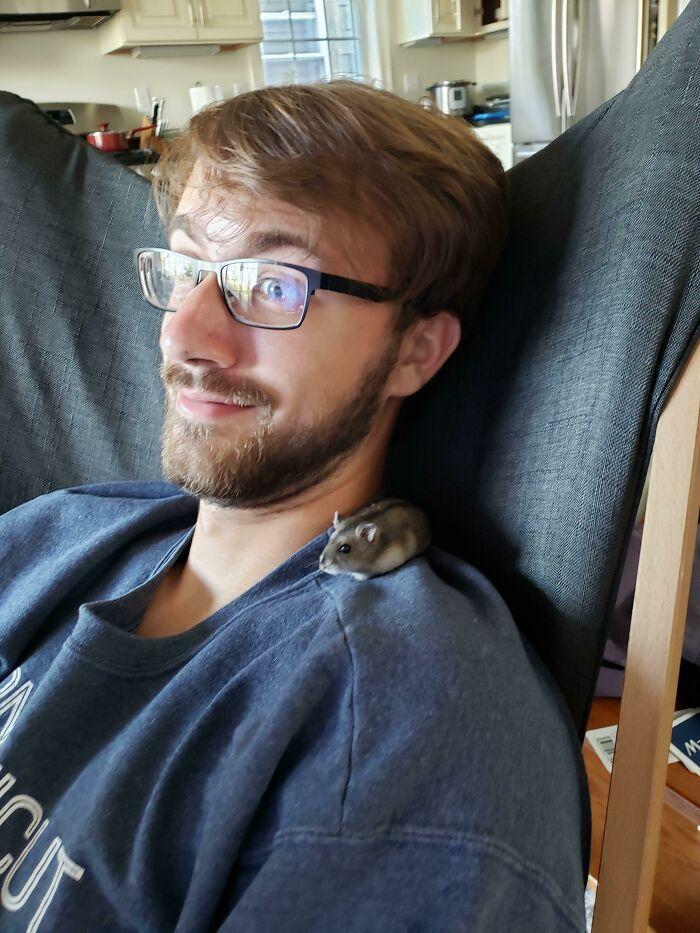 As pessoas postam fotos de gatos nos ombros e agora os proprietários de outros animais de estimação aderiram à tendência 19