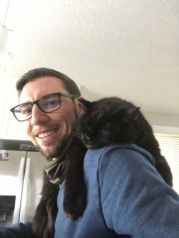 As pessoas postam fotos de gatos nos ombros e agora os proprietários de outros animais de estimação aderiram à tendência 33