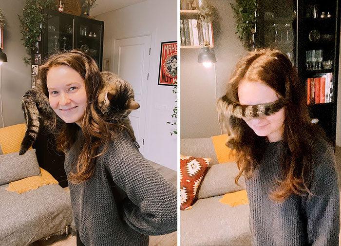 As pessoas postam fotos de gatos nos ombros e agora os proprietários de outros animais de estimação aderiram à tendência 40