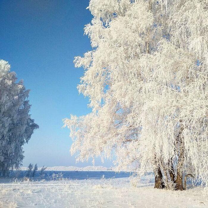 30 fotos que mostram o quão insuportável está o frio na Rússia agora 9