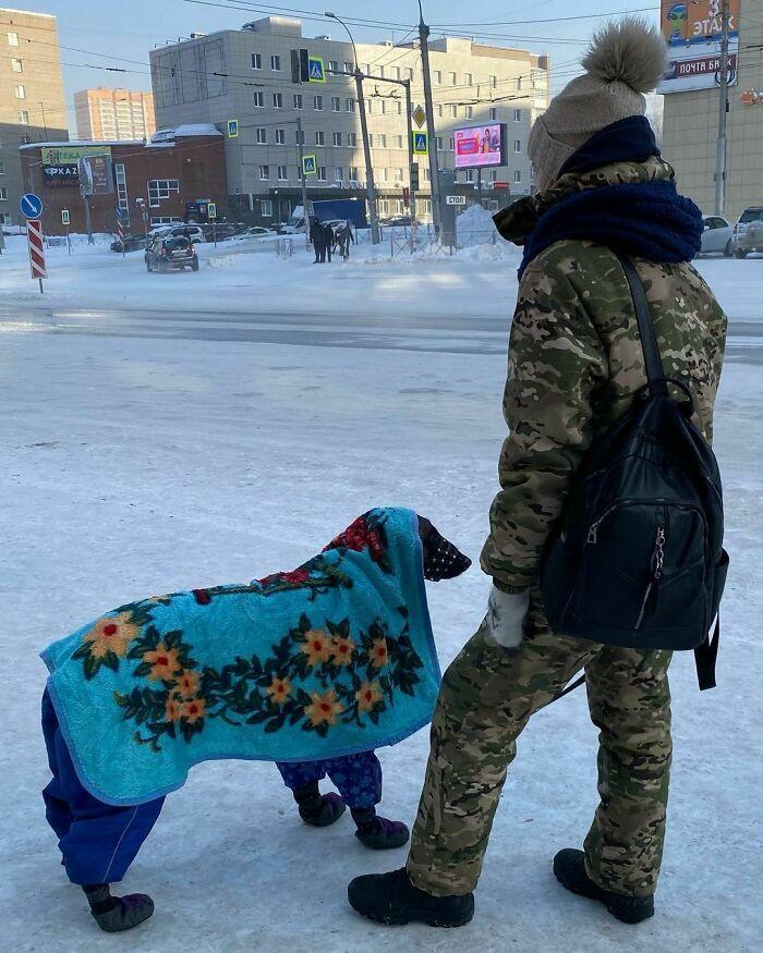 30 fotos que mostram o quão insuportável está o frio na Rússia agora 11