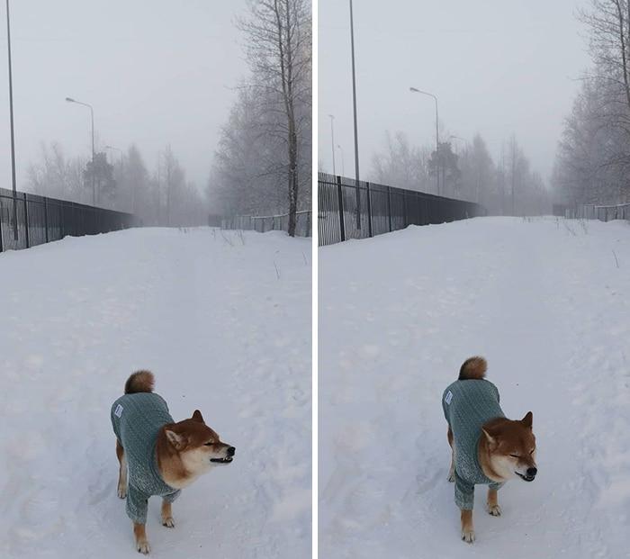 30 fotos que mostram o quão insuportável está o frio na Rússia agora 26