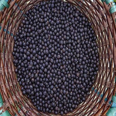 Você só pode salvar uma fruta de cada cor: 6