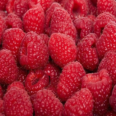 Você só pode salvar uma fruta de cada cor: 24