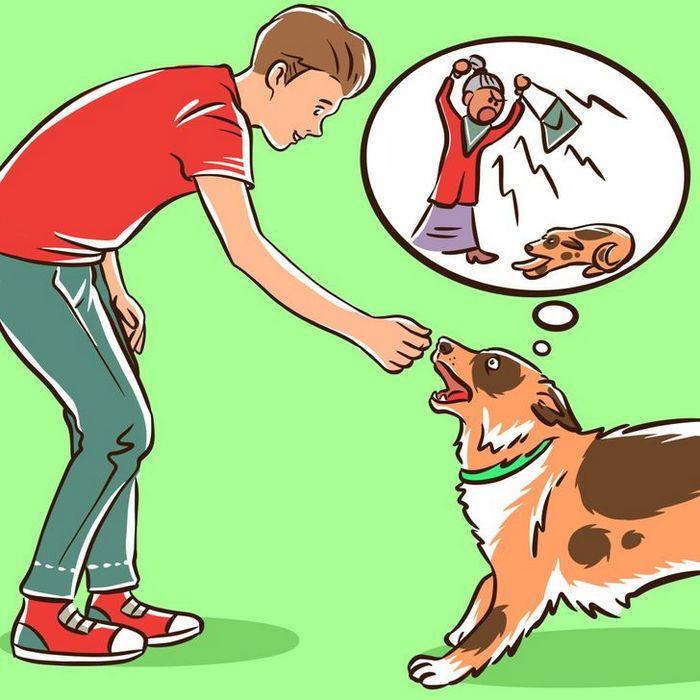 Por que o cachorro late para algumas pessoas e outras não? 5