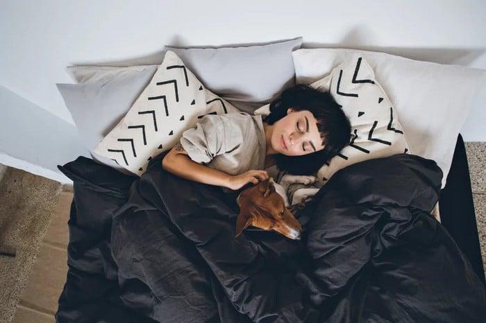A ciência comprova que os cachorros conseguem entender emoções de seus donos 9