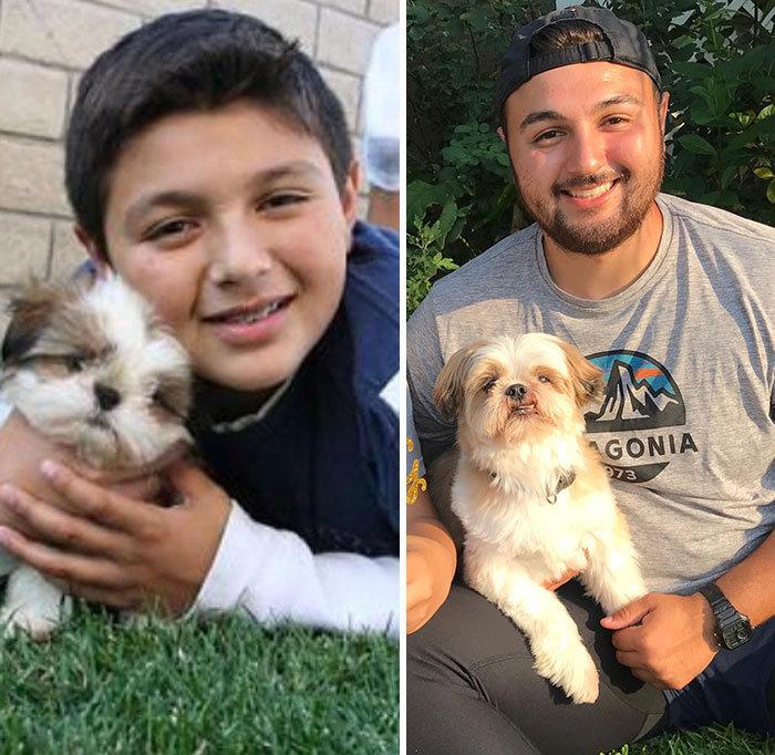 40 adoráveis cães antes e depois de crescer 16