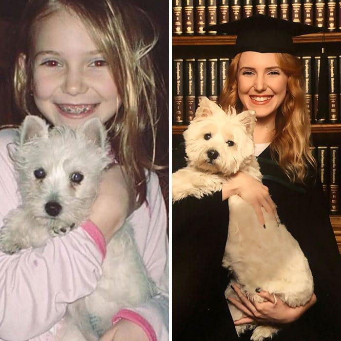 40 adoráveis cães antes e depois de crescer 39