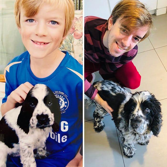40 adoráveis cães antes e depois de crescer 40