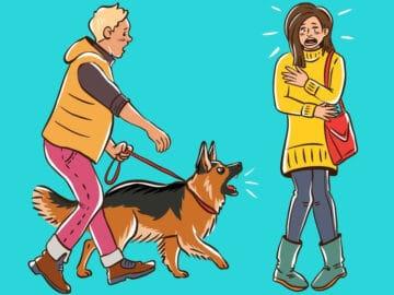 Por que o cachorro late para algumas pessoas e outras não? 24