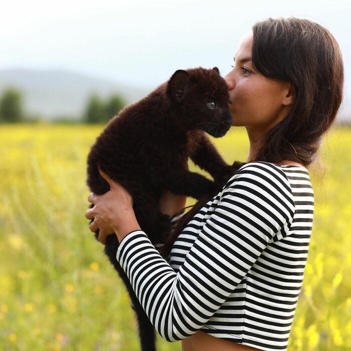 Pantera rejeitada pela mãe conquista internet ao lado do irmão Rottweiler 11