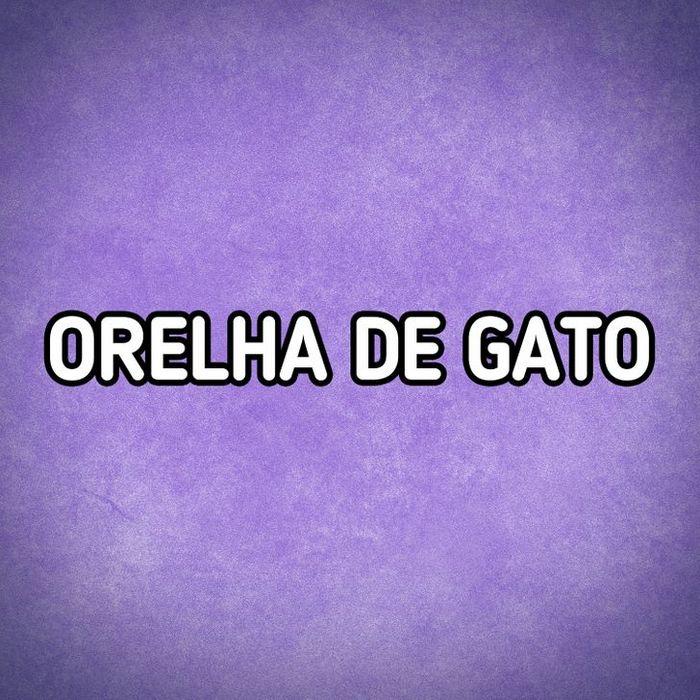 Você consegue descobrir o nome desses pratos típicos brasileiros 24