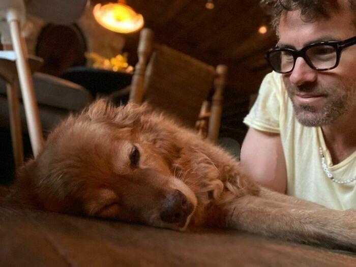 38 celebridades que são verdadeiros amantes de cães 19
