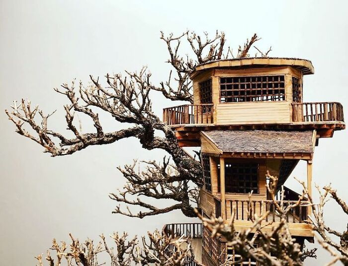 24 fantásticas casas na árvore de bonsai 23