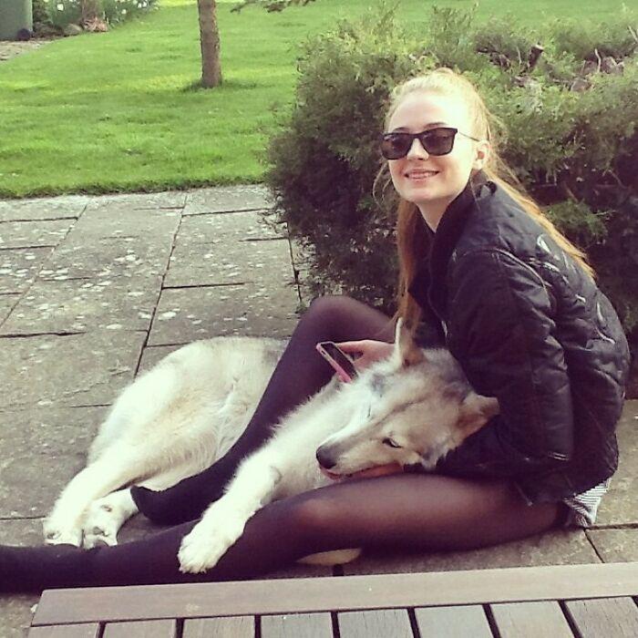 38 celebridades que são verdadeiros amantes de cães 29