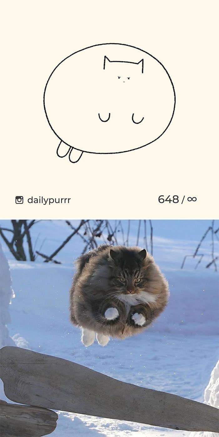 Aqui estão meus 40 novos desenhos de gatos bobos para fazer você rir 7
