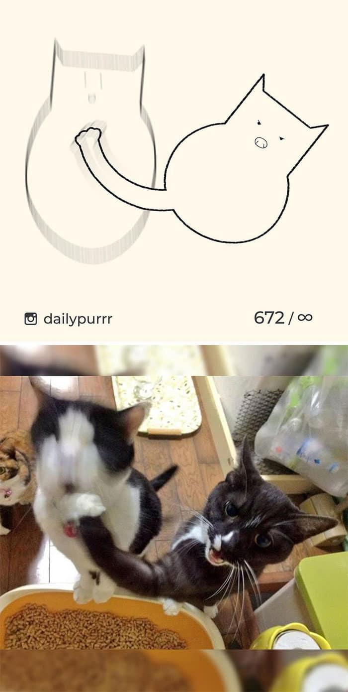 Aqui estão meus 40 novos desenhos de gatos bobos para fazer você rir 14