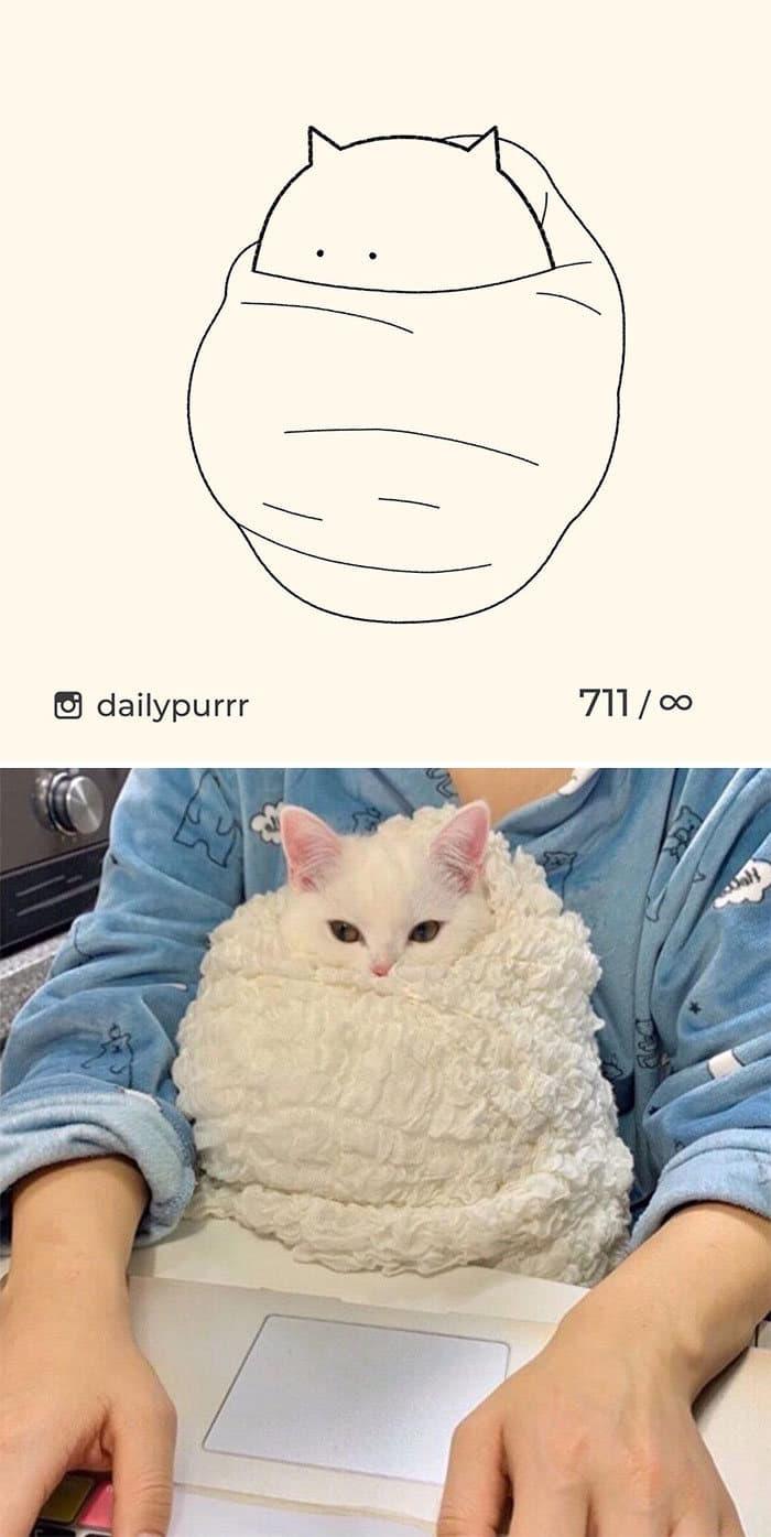 Aqui estão meus 40 novos desenhos de gatos bobos para fazer você rir 19