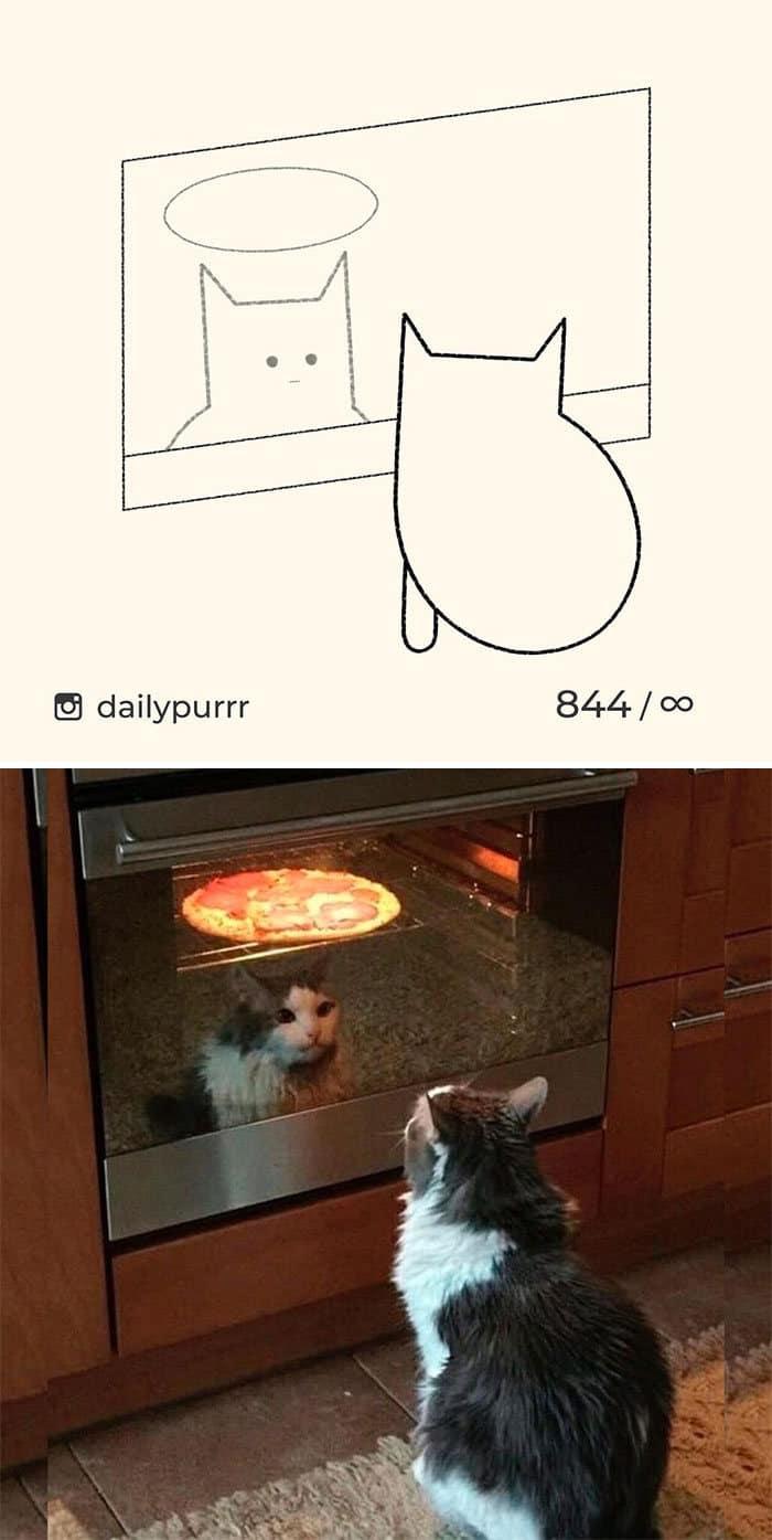 Aqui estão meus 40 novos desenhos de gatos bobos para fazer você rir 27