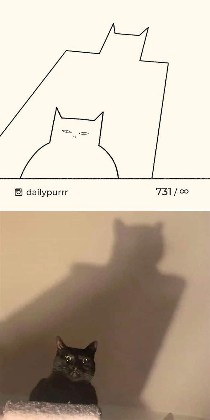 Aqui estão meus 40 novos desenhos de gatos bobos para fazer você rir 35