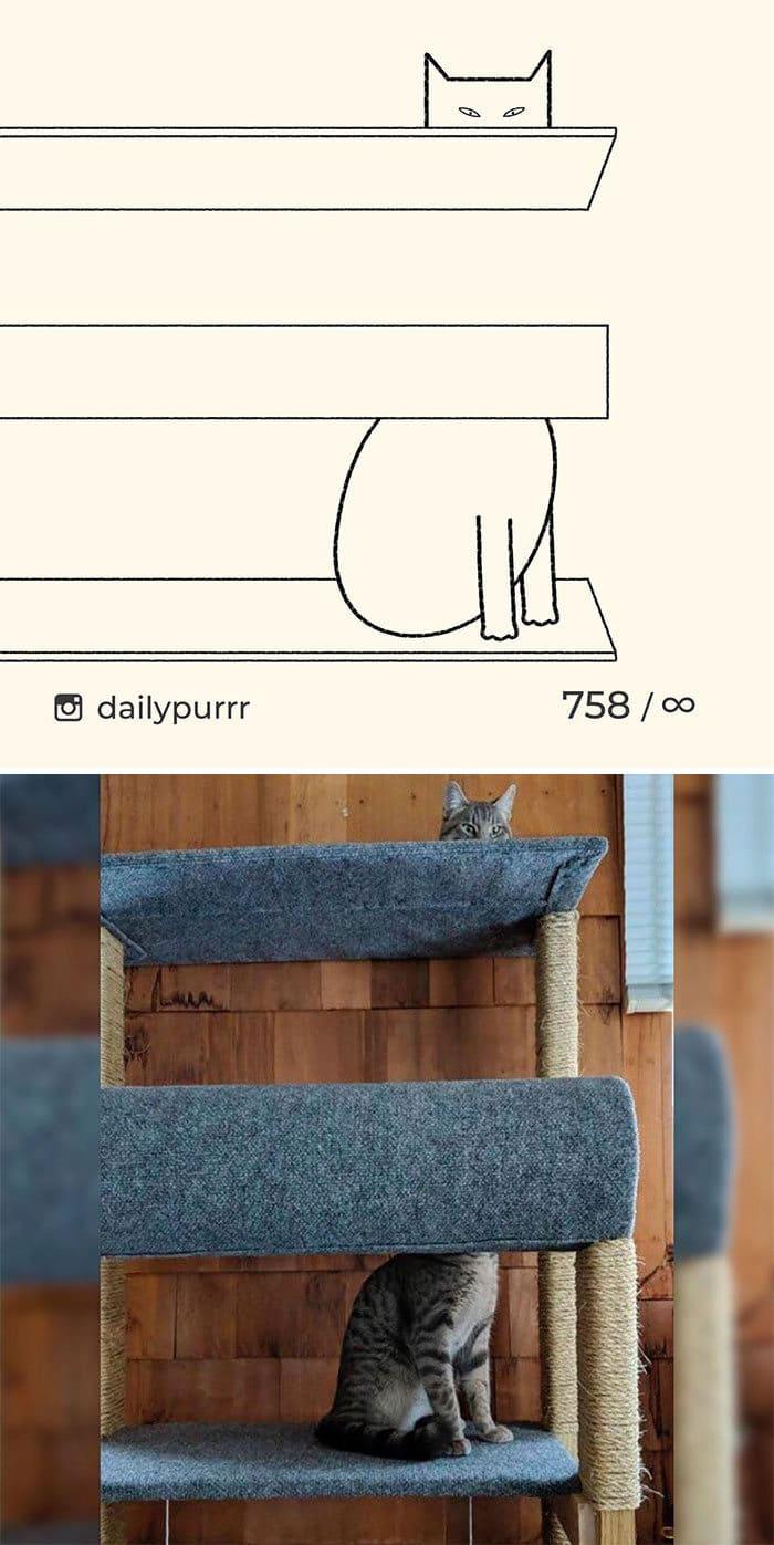 Aqui estão meus 40 novos desenhos de gatos bobos para fazer você rir 37