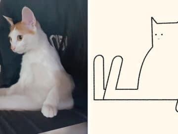 Aqui estão meus 40 novos desenhos de gatos bobos para fazer você rir 13