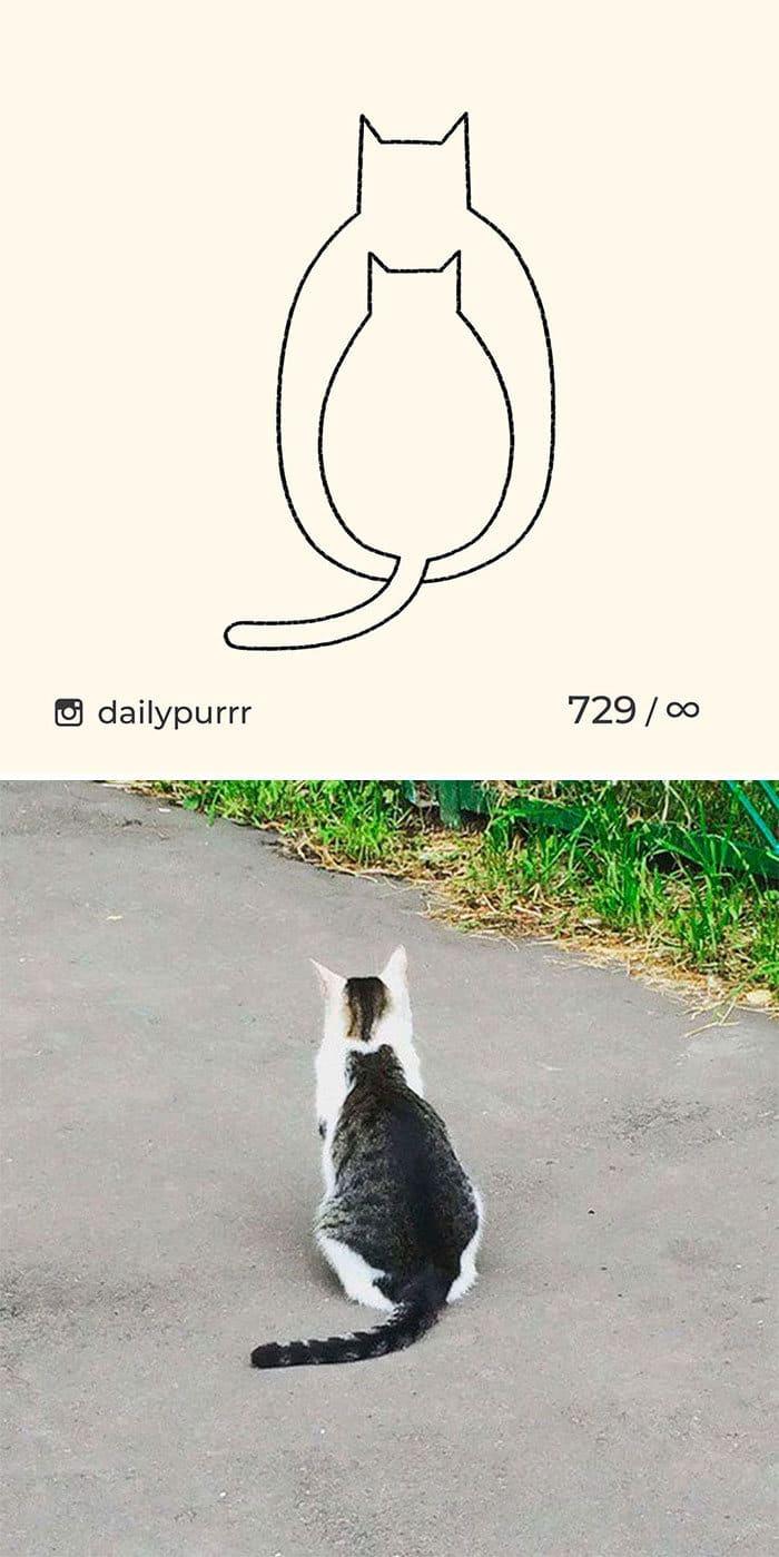 Aqui estão meus 40 novos desenhos de gatos bobos para fazer você rir 39